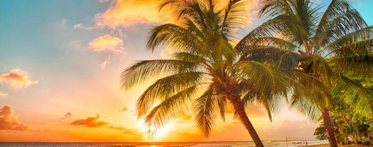 Séjour tout compris Punta Cana
